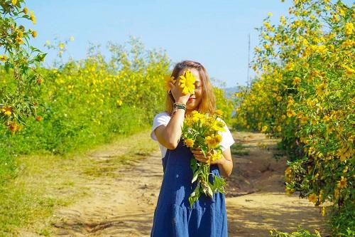Mùa hoa dã quỳ nở tuyệt đẹp tại Gia Lai